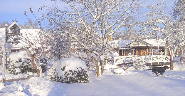 Weihnachten 2019 Schnee.Arrangement Weihnachten 2019 2020 Hotel Walsrode Lüneburger Heide